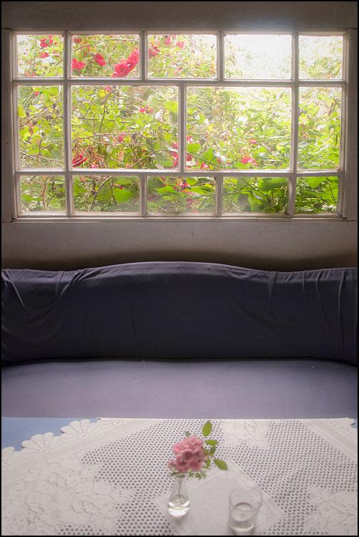 Rosigt fönster