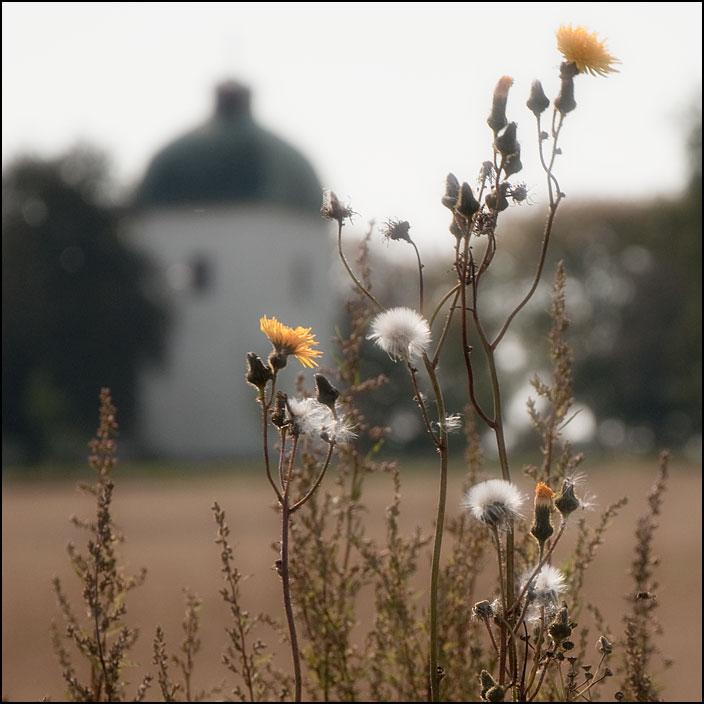Sallerups kyrka på avstånd