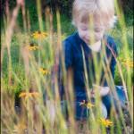 Behind the Grass