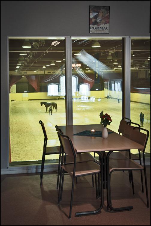 Utsikt från restaurangen på Flyinge Kungsgård