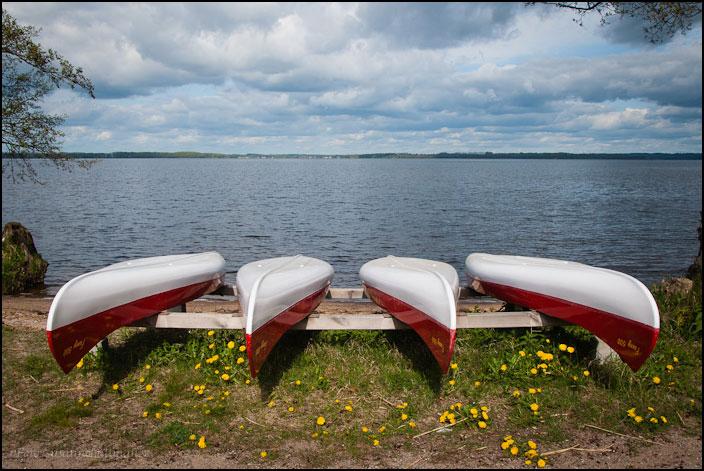Fyra kanoter