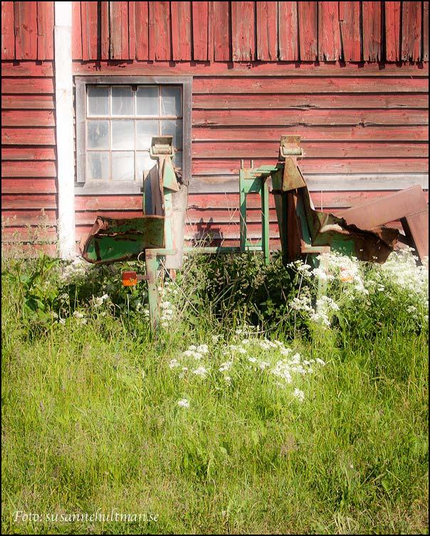 Somrigt fönster