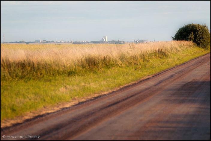 Landskap med grusväg, vetefält och byggnader i horisonten