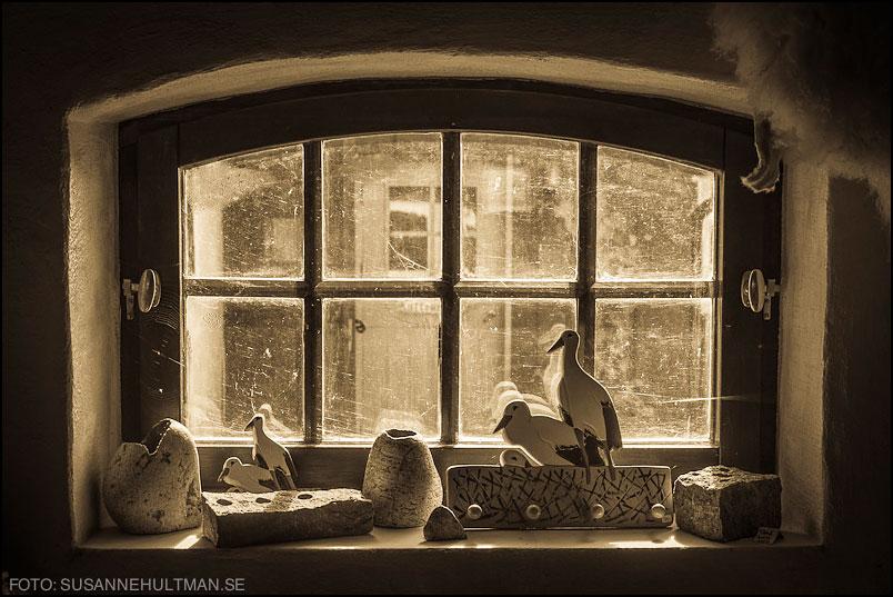Skånskt fönster med gäss