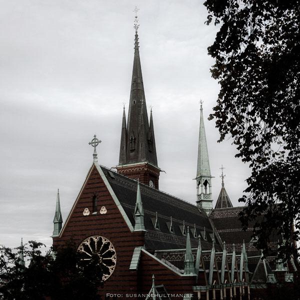 Trädsilhuett vid kyrka