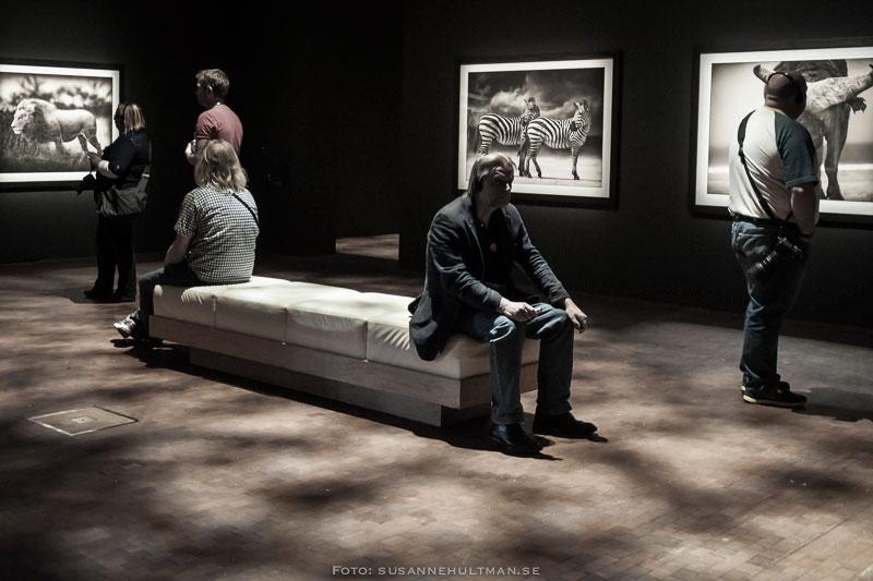 Museibesökare vid fotografier