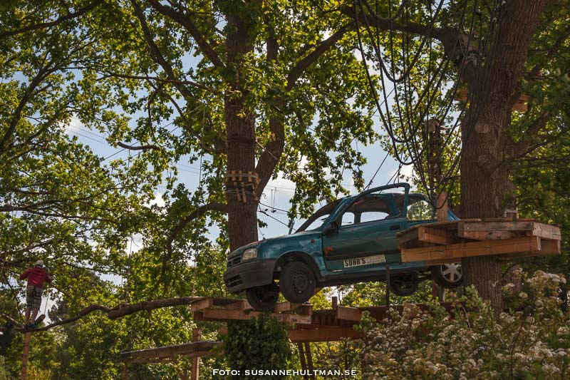 Bil i träd