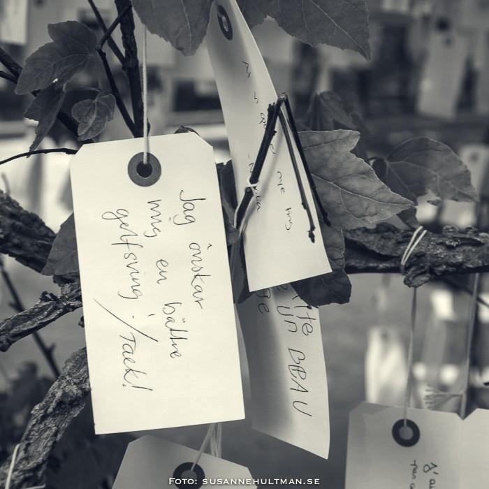 Önskelappar på önskaträd