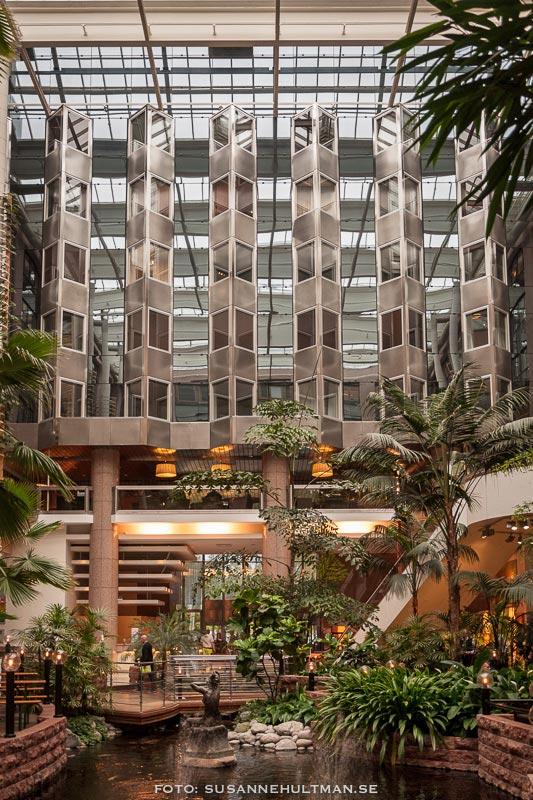 Hotellrummen och dammen