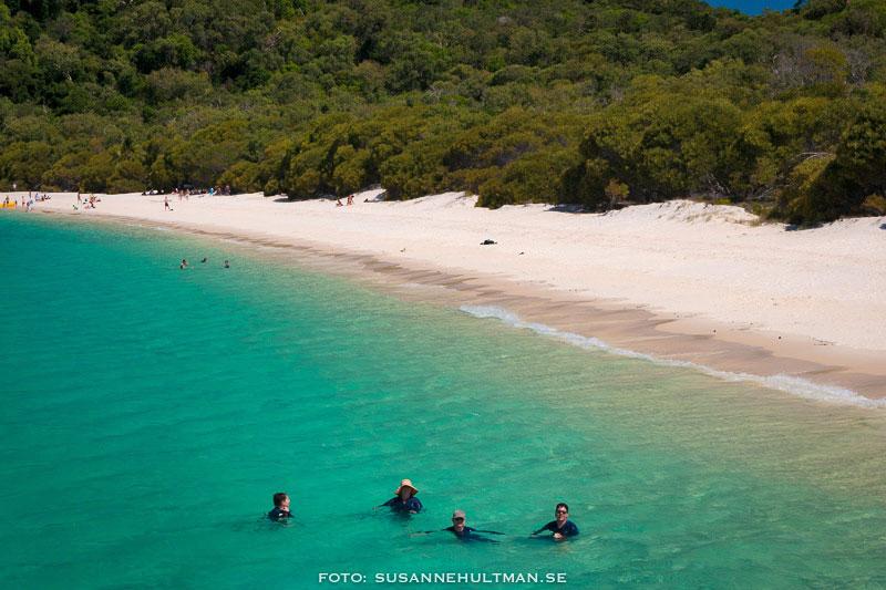 Whitehaven Beach med badare