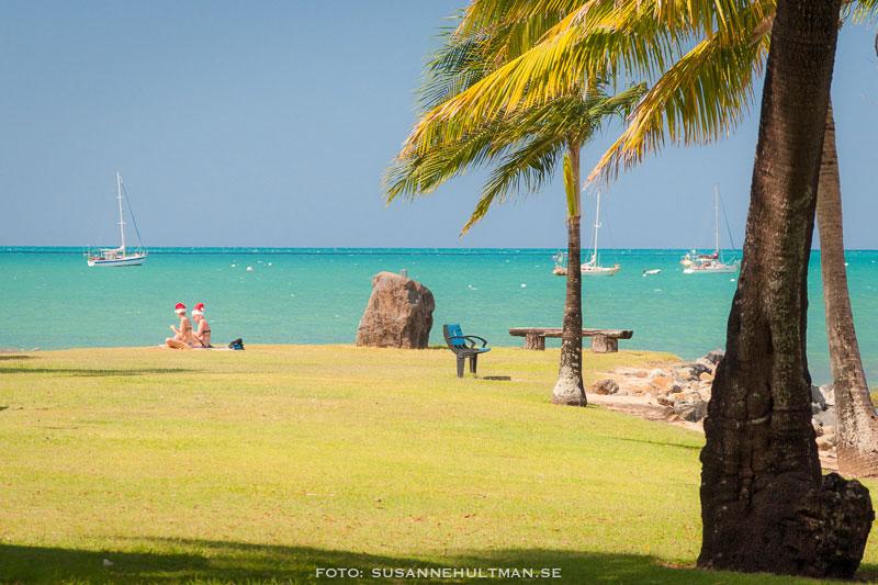 Palm och två tomteflickor vid stranden