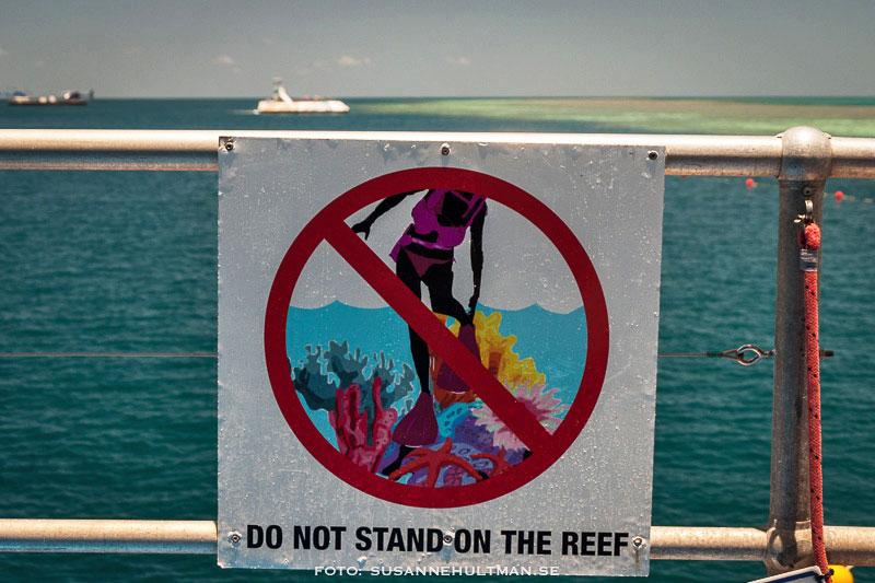 Förbud att gå på korallerna