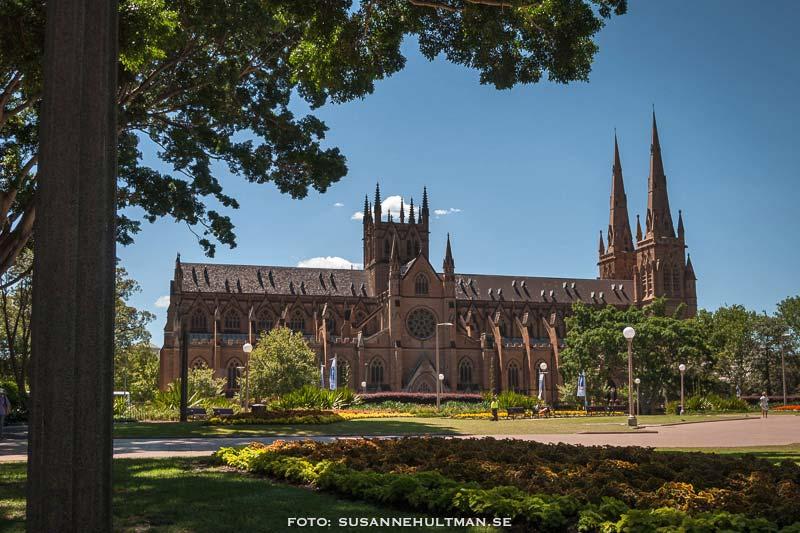 Långsidan av katedralen