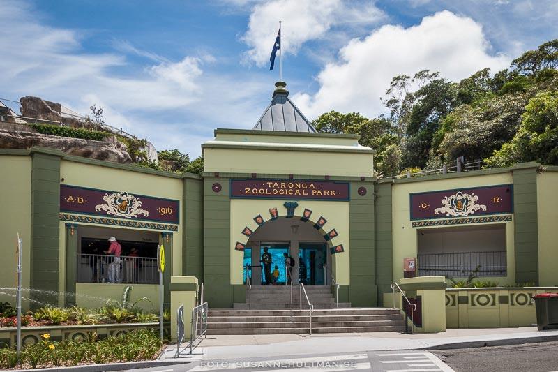 Entrén till Taronga Zoo