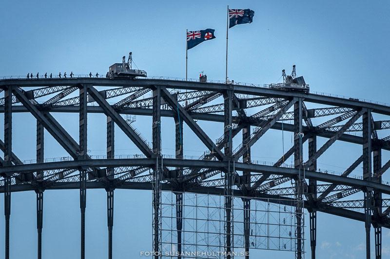 Harbour Bridge med silhuetter av klättrande personer