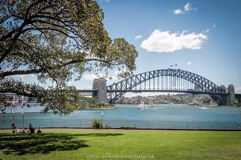 Harbour Bridge från Opera House