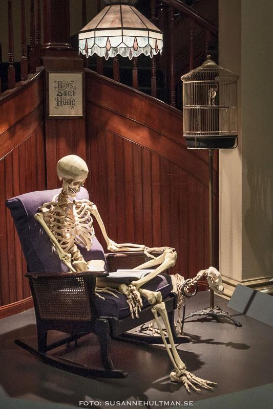 Skelett i fåtölj läser tidning