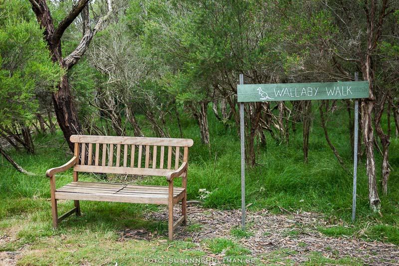 """Bänk bredvid skylt med """"Wallaby Walk"""""""