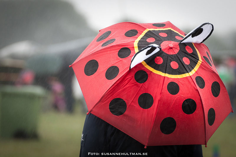 Prickigt paraply med öron