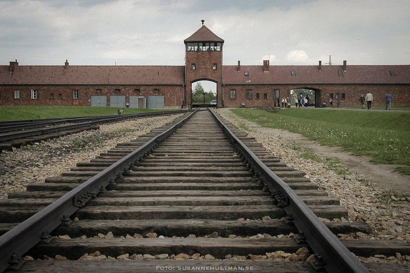 Dödsporten och järnvägsspåren i Birkenau