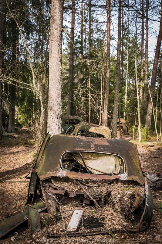 Rostiga bilar i kö efter varandra i skogen
