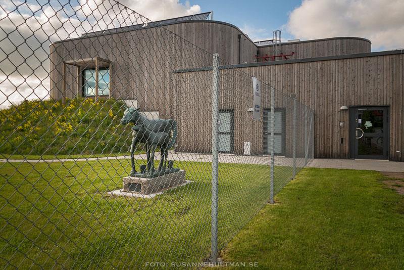 Skulptur bakom stängsel