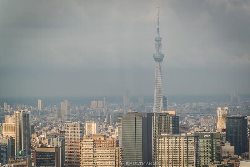 Utsikt över byggnader med Tokyo Tower