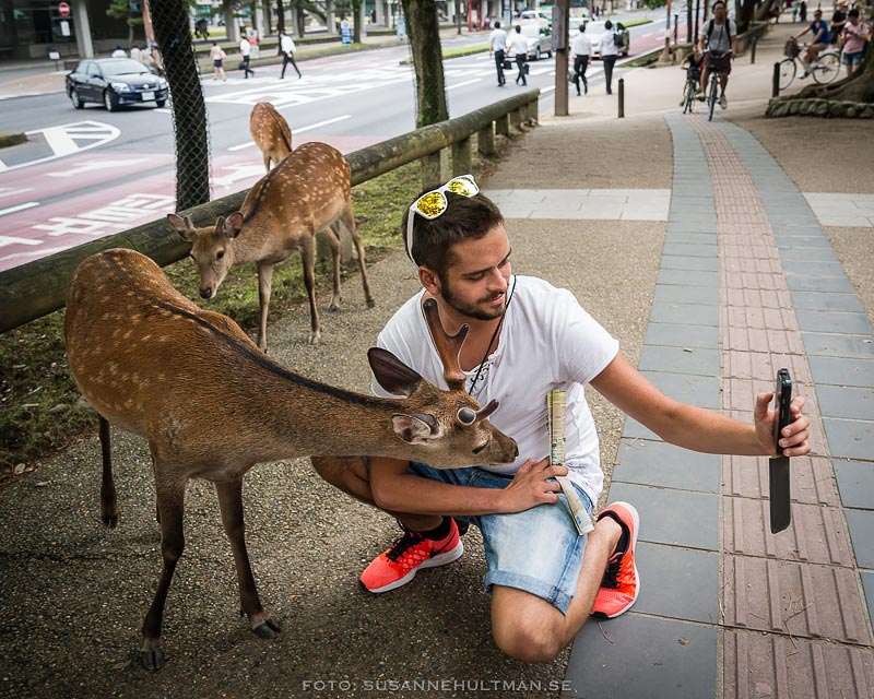 Sonen tar selfie med rådjur