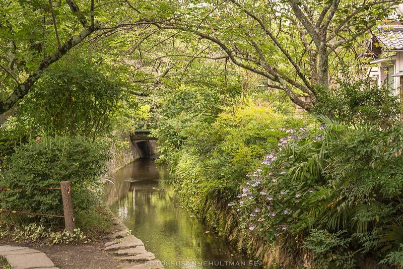 Kanalen vid Filosofens stig
