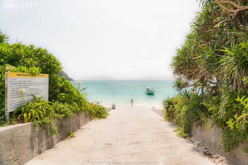 Väg mot strand