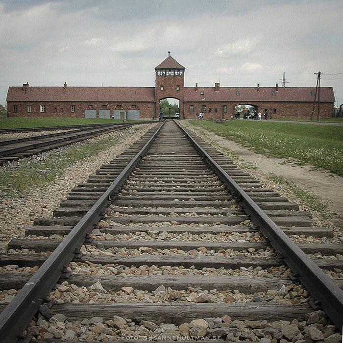 Järnvägsspåren i Birkenau