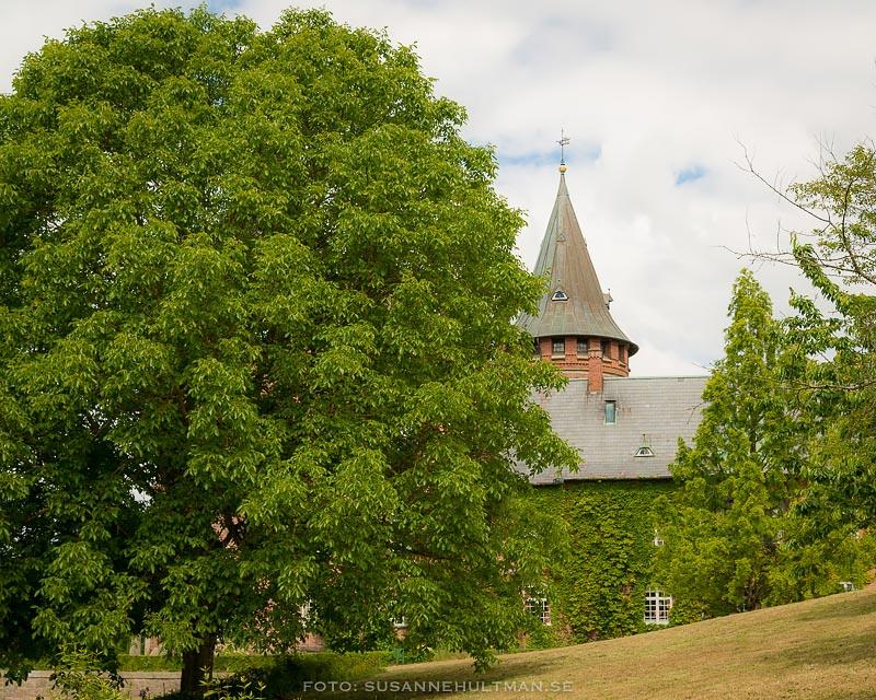 Trollens slott bakom träd.