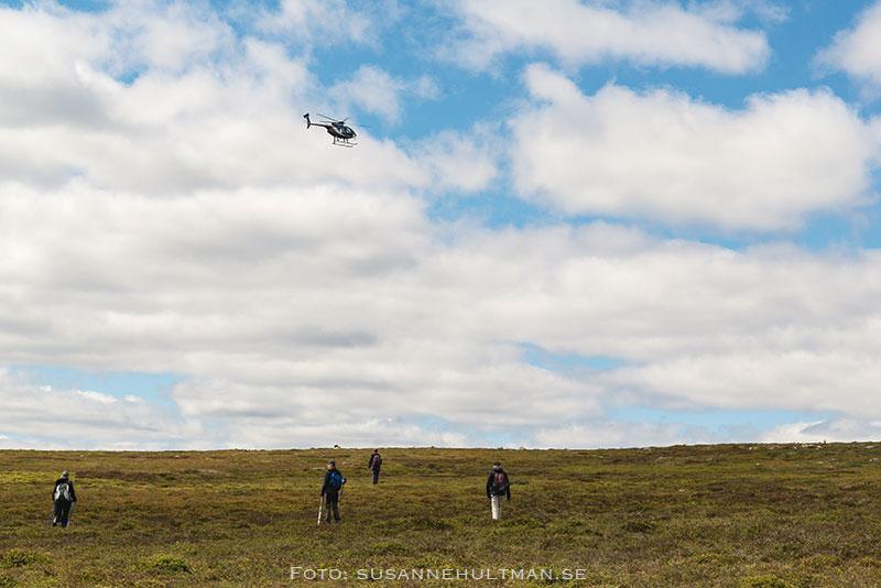 Helikopter över fjället