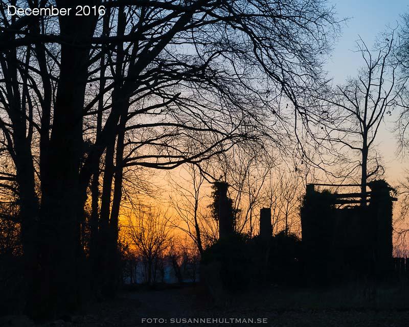 Cascina Antonia i solnedgången