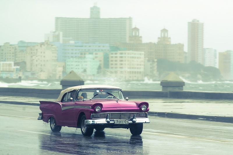 Violett bil i regn
