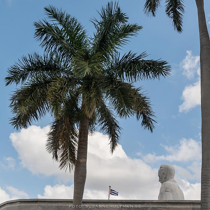 Kungspalm, flagga och staty