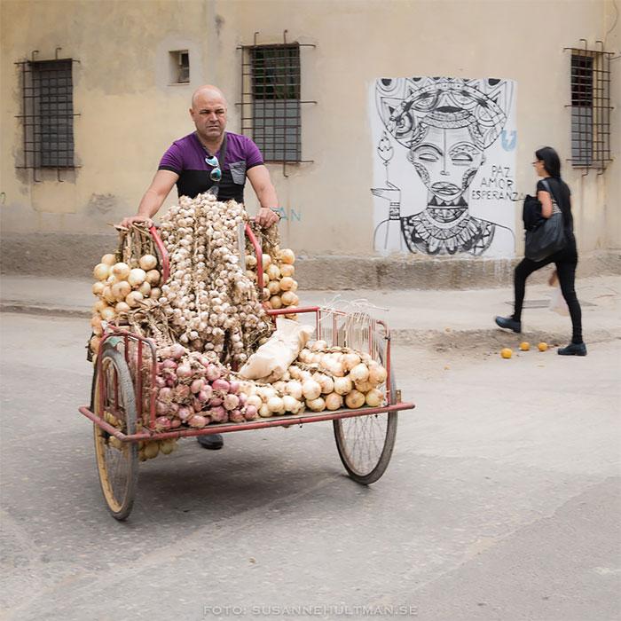 Lökförsäljare på cykel
