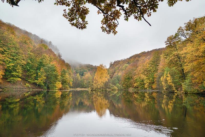 Spegling i sjön