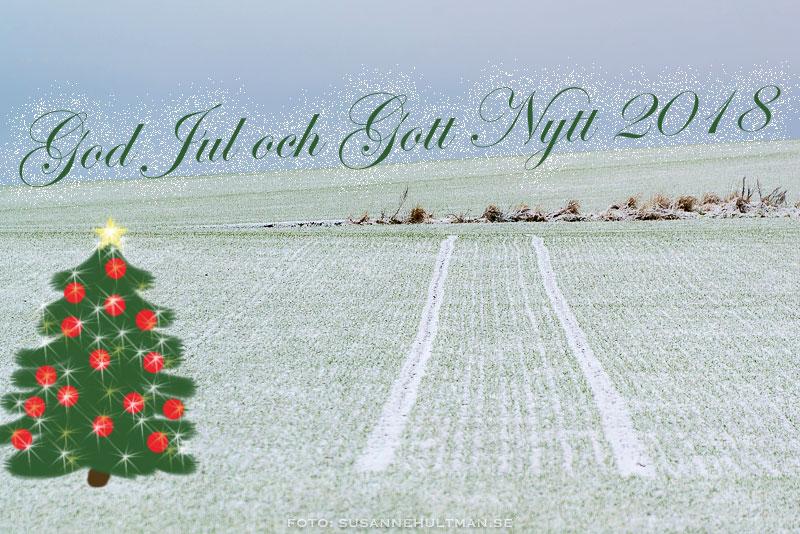 Fält med snö och inritad julgran