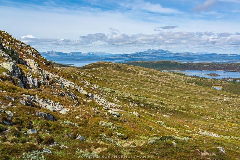 Landskap med blå berg i bakgrunden