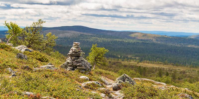 Stenröse vid bergskam