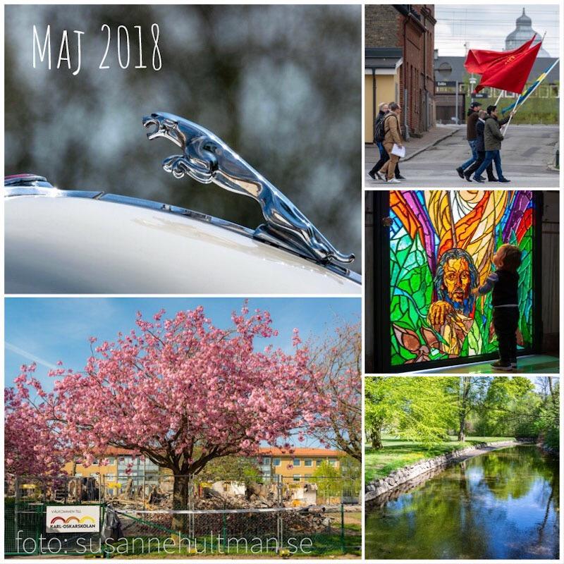 Collage med jaguarfigur, första maj-tåg, körsbärsblom, kyrkfönster och grönska runt å.