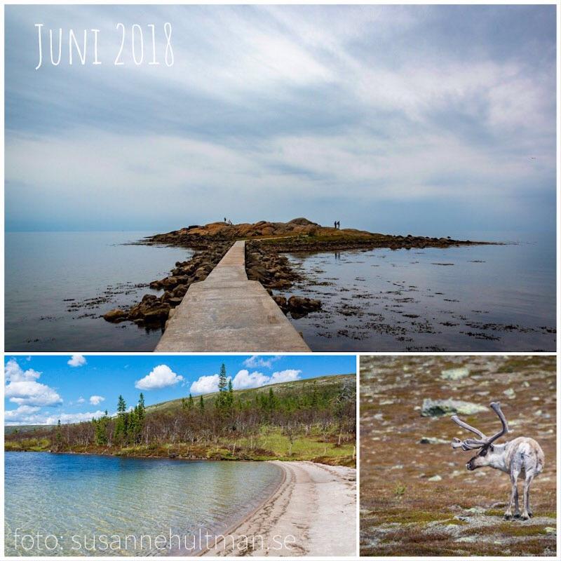 Collage med hav, fjällsjö och ren.
