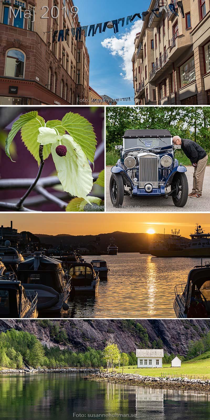 Jenas, näsduksträd, veteranbil, solnedgång och hus vid vatten.