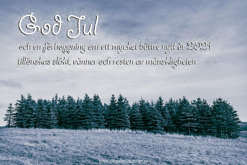 Fejkat snölandskap med granar och en skriven julhälsning.