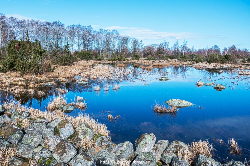 Spegelblank vattenyta med stenar i förgrunden.