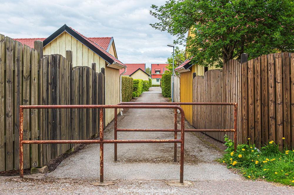 Cykelväg mellan småhusbebyggelse.